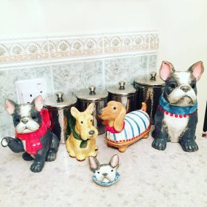 Animal Teapot Set at Orange Tree Private Care